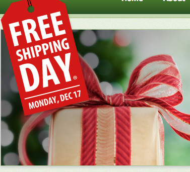 free shipping day coupon codes